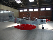 SIAI-Marchetti SF-260EU Warrior