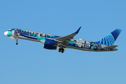 Boeing 757-224/WL (N14102)