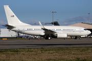 Boeing C-40C/BBJ (737-7CP) Clipper (02-0202)