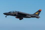 Dassault/Dornier Alpha Jet E (E25)