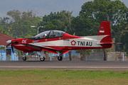 KT-1B Wong Bee (LL-0106)
