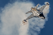 General Dynamics F-16AM Fighting Falcon - FA-101