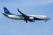 Boeing 737-8ZQ/WL (7T-VCA)