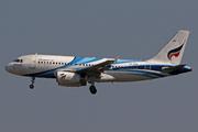 Airbus A319-132 (HS-PPB)