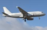 Airbus A319-113X CJ