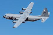 Lockheed C-130H Hercules (L-382) - 16801