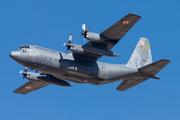 Lockheed C-130E Hercules (1504)