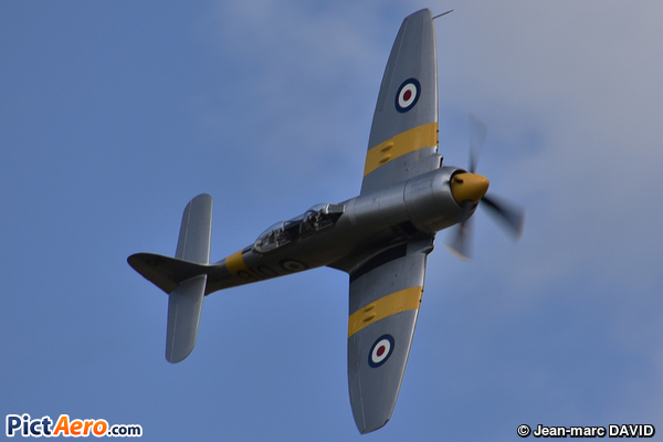 Hawker Sea Fury T20S (The Fighter Collection)