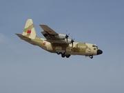 Lockheed C-130H Hercules (L-382) (CN-AOL)