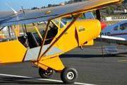 Piper PA-18-135