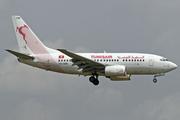 Boeing 737-6H3 (TS-IOM)