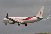Boeing B-737.8D6/BCF Freighter Winglets (7T-VJJ)