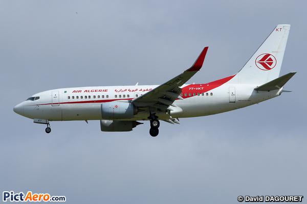 Boeing 737-7D6/WL (Air Algerie)