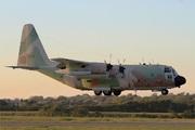 Lockheed C-130E Hercules (435)