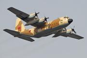 Lockheed C-130H Hercules (L-382) (CN-AON)