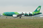 Airbus A320-214 (EI-DEI)