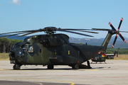 Sikorsky S-65 (H-53/CH-53) Sea Stallion/Super Stallion/Sea Dragon