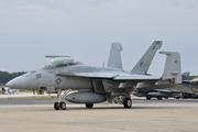 Boeing F/A-18F Super Hornet (166667)