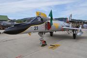 Dassault Super Etendard SEM (23)