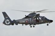 Eurocopter SA-365F1 Dauphin 2 (313)