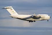 Boeing C-17A Globemaster III (KAF 343)