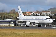 Airbus A319-115CJ (D-APGS)