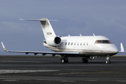 Bombardier CL-600-2B16 Challenger 604 (N312AM)