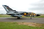 Panavia Tornado ECR (4633)