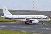 Airbus A319-115X/CJ (15-01)