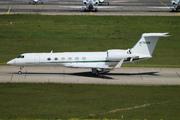 Gulfstream Aerospace G-V Gulfstream V (N176SM)