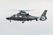 Eurocopter AS-365N-1 Dauphin 2