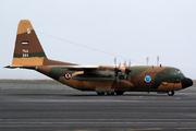 Lockheed C-130H Hercules (L-382) (344)