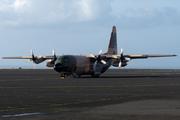 Lockheed C-130H Hercules (L-382) (345)