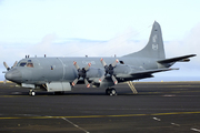 Lockheed cp-140 aurora