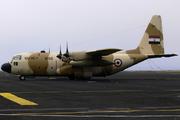 Lockheed C-130H Hercules (L-382) (1292)