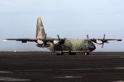 Lockheed C-130H Hercules (L-382) (16803)