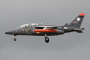 Dassault Dornier AlphaJet E (E 80)
