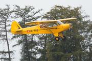 Piper PA-18-90 Super Cub