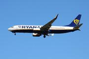 Boeing 737-8AS/WL (EI-DLY)